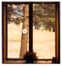 Photo showing view from a traditional window and an ENERGY STAR certified window