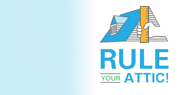 Rule Your Attic  Campaign