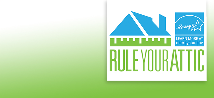 Rule Your Attic Campaign Logo