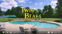 Twin Beaks