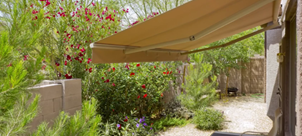 photo of a garden with an awning