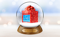 ENERGY STAR gift snow globe