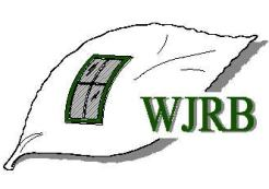 Logo for WJRB Consulting & Design